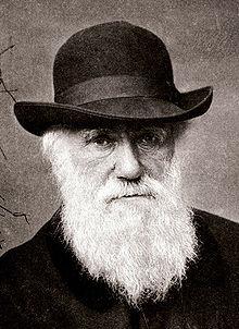 Картинки по запросу Чарльз Дарвин с водкой