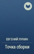 Евгений Лукин - Точка сборки